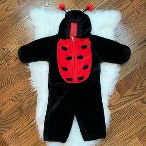 Halloween Ladybug Hooded Costume 12-24 Months